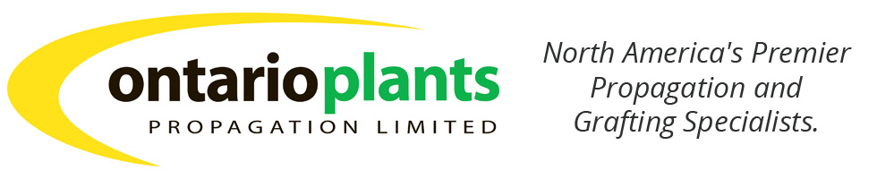 Ontario Plants Propagation Ltd